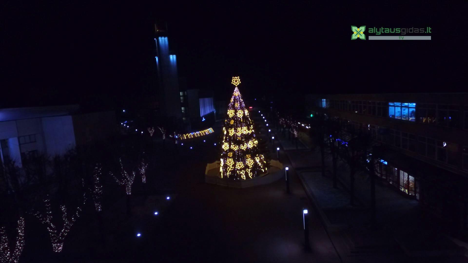 Palyginimui - 'normali' Alytaus Kalėdų eglė 2015 metais. Alytausgidas.lt TV nuotr.